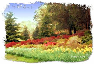 Photograph - Do-00156 Victoria Garden by Digital Oil