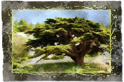 Photograph - Do-00318 Cedar Barouk - Framed by Digital Oil