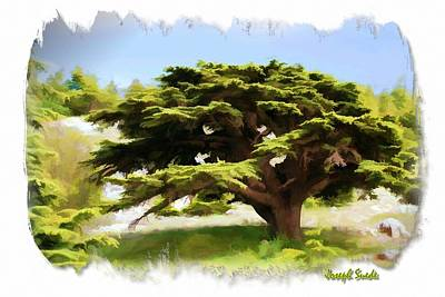 Do-00319 Cedar Tree Art Print by Digital Oil