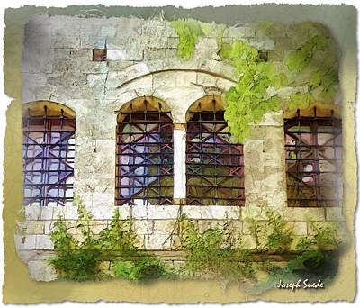 Photograph - Do-00330 Windows And Plants by Digital Oil