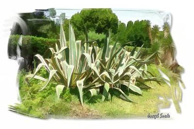 Photograph - Do-00335 Plant Bois Des Pins by Digital Oil