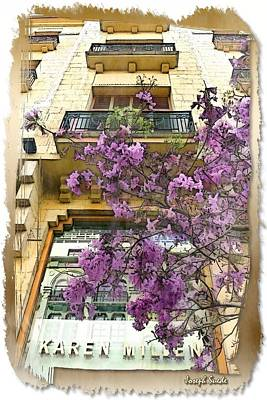 Photograph - Do-00356 Flowers On Facade by Digital Oil