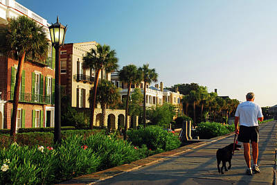 Photograph - Do The Charleston Dog Walk by James Kirkikis