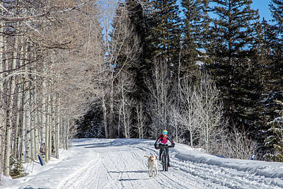 Photograph - Do They Sell Snow Tires For Bikes by Carol M Highsmith