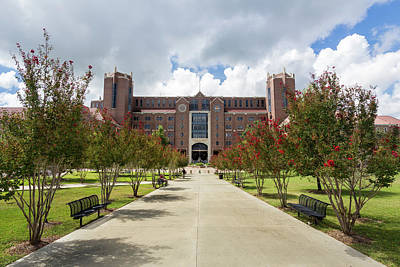 Typographic World Rights Managed Images - Doak S. Campbell Stadium at Florida State University Royalty-Free Image by Bryan Pollard