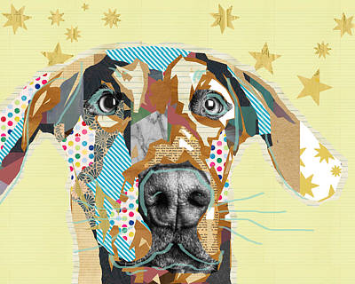 Doberman Mixed Media - Doberman Collage by Claudia Schoen