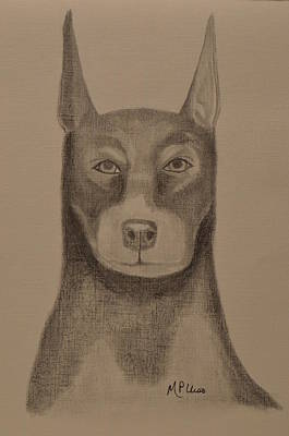 Doberman Drawing - Doberman by Maria Urso