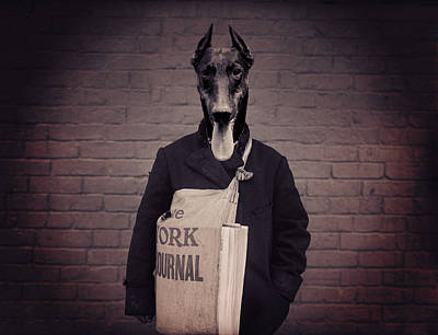 Doberman Pinscher Wall Art - Photograph - Doberman Paperboy by Aged Pixel