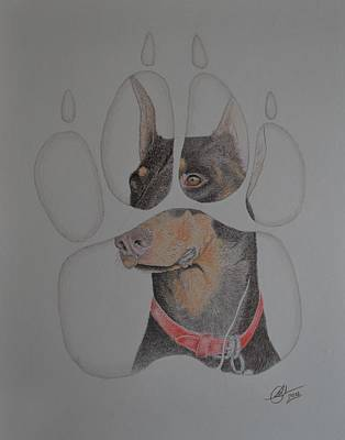 Drawing - Doberman Paws by Benoit Charron