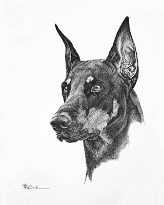 Drawing - Doberman Trial Show Dog With A Long Ear Cut_dobe by Mary Dove