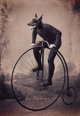 Doberman Velocipede Art Print by Aged Pixel