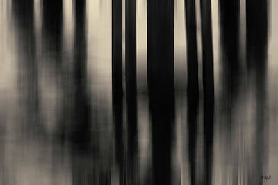 Photograph - Dock And Reflection I Toned by David Gordon