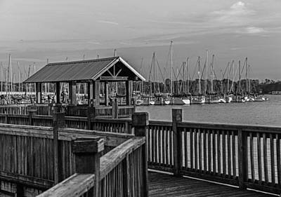 Airplane Paintings - Dock at Mandarin Park Black and White by Spencer Studios