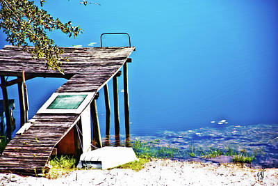 Photograph - Dock Of The Lake by Gina O'Brien