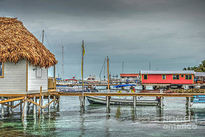 Photograph - Dock Of The Sea by David Zanzinger