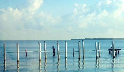 Photograph - Dock Pilings by Tim Townsend
