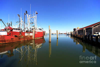 Photograph - Dock Reflections On Long Beach Island by John Rizzuto