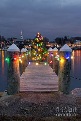 Photograph - Dock The Halls by Butch Lombardi