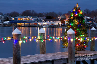Photograph - Dock The Halls II by Butch Lombardi
