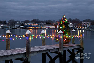 Photograph - Dock The Halls IIi by Butch Lombardi