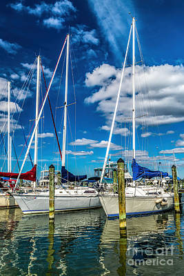 Photograph - Docked Boats by Nick Zelinsky