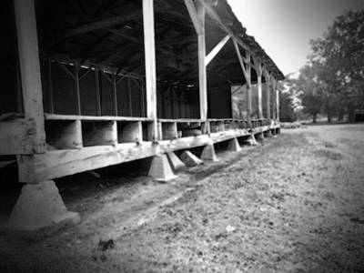 Photograph - Dockery Mississippi 8 by Karen Wagner