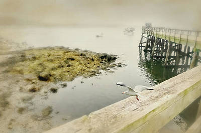 Photograph - Dockside by Diana Angstadt