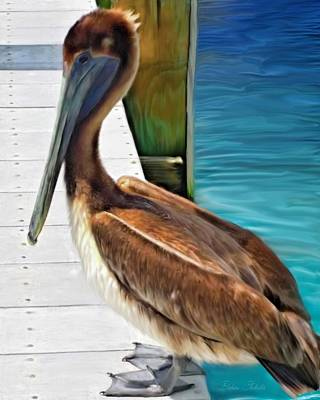 Dockside Pelican Art Print by Barbara Chichester