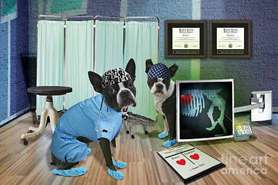 Boston Terrier Photograph - Doctor Games by Eric Chegwin