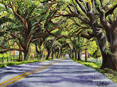 Docville Oaks Art Print by Elaine Hodges