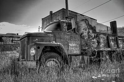 Photograph - Dodge 800 Dump Truck by Tony Baca
