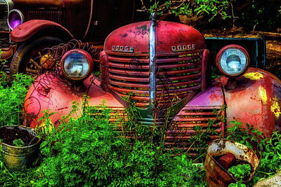 Dodge And Ford Rusting Away Art Print by Garry Gay
