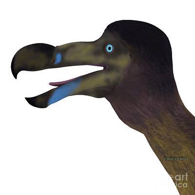 Dodo Digital Art - Dodo Bird Head by Corey Ford