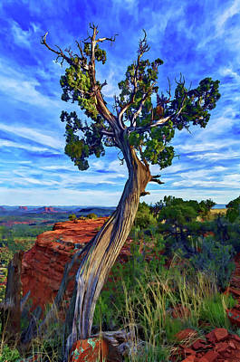 Manipulation Photograph - Doe Mountain Juniper by ABeautifulSky Photography