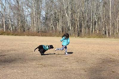 Newfoundland Puppy Photograph - Dog 377 by Joyce StJames