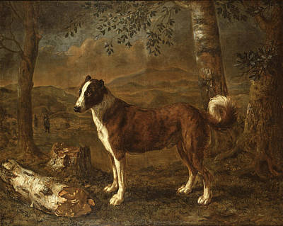 Painting - Dog And A Birch Log by Govert Dircksz Camphuysen
