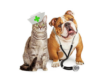 Dog And Cat Veterinarian And Nurse Art Print by Susan Schmitz