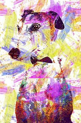 Dog Animal Greyhound  Art Print