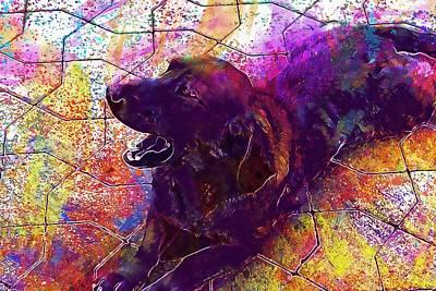 Dachshund Art Digital Art - Dog Animals Dachshund Hybrid Pet  by PixBreak Art