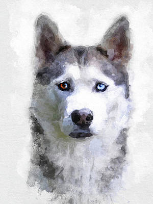 Watercolor Pet Portraits Drawing - Dog Art by Alex B