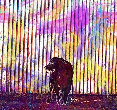 Labrador Digital Art - Dog Black Labrador Standing Grass  by PixBreak Art