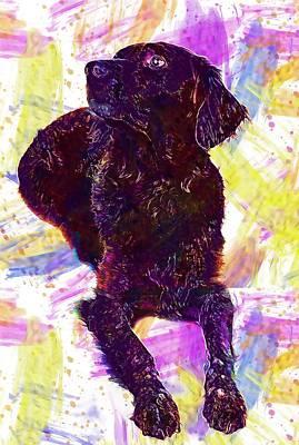 Digital Art - Dog Brown Pet Hundeportrait  by PixBreak Art
