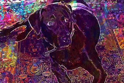Labrador Digital Art - Dog Chocolate Labrador Retriever  by PixBreak Art