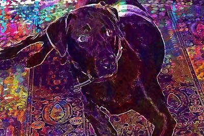 Chocolate Labrador Digital Art - Dog Chocolate Labrador Retriever  by PixBreak Art