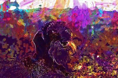 Dachshund Art Digital Art - Dog Dachshund Beard  by PixBreak Art