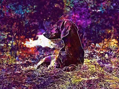 Dachshund Art Digital Art - Dog Dachshund Brown Animal  by PixBreak Art