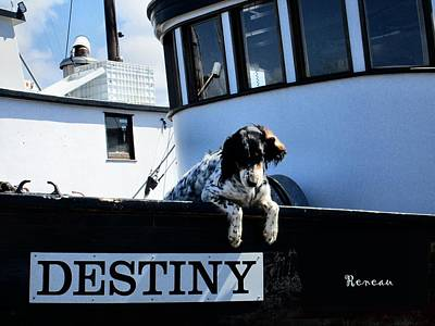 Photograph - Dog Destiny by Sadie Reneau