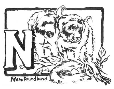 Wall Art - Painting - Dog Drawing Newfoundland Black And White And Letter N by Kim Guthrie