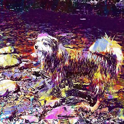 Digital Art - Dog Happy River Nature Water Play  by PixBreak Art