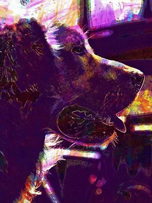 Golden Retriever Digital Art - Dog Head Snout Golden Retriever  by PixBreak Art